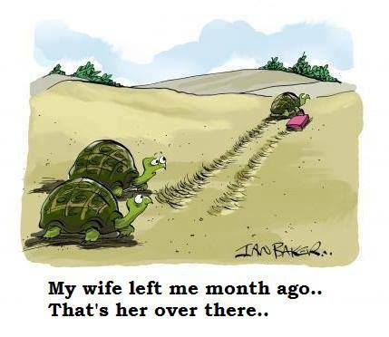 Goodbye Wife!