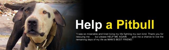 Help-a-Pitbull