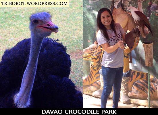 My Vacation in Davao City