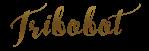 boti signature