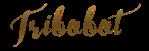 boti-signature02