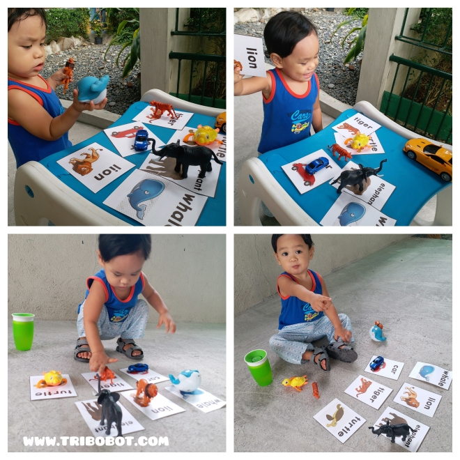 Get Your Toddler Busy with Flashcards Matching (www.tribobot.com)