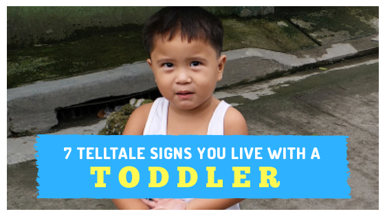 7 Telltale Signs You Live With A Toddler (www.tribobot.com)